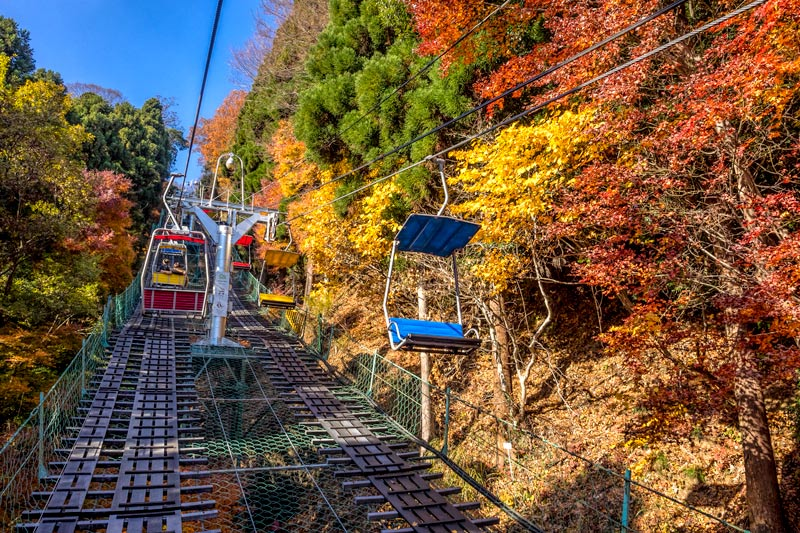 Tokyo's BEST places to See the Autumn Leaves 2019