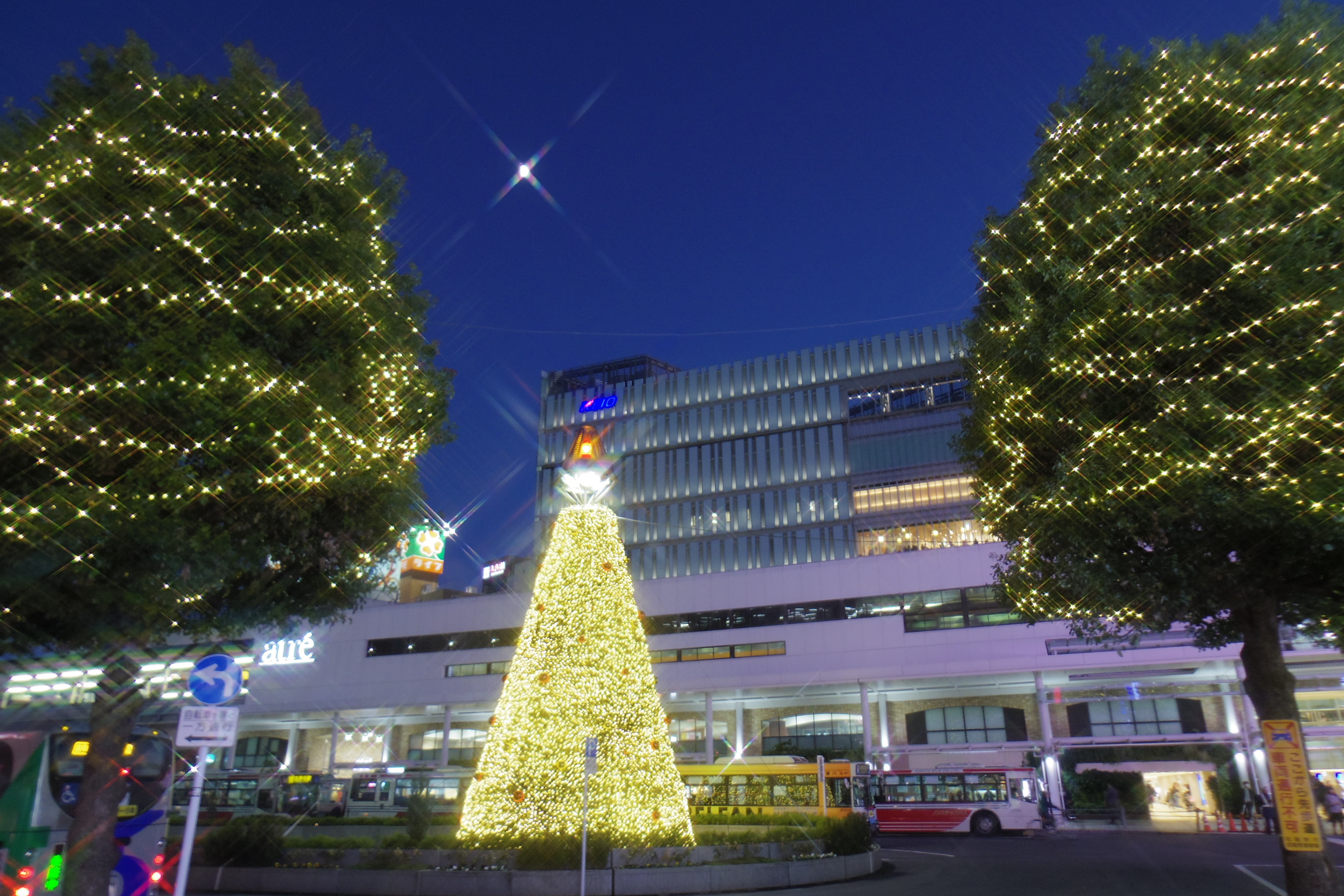 Tokyo's top FREE illuminations 2019-2020