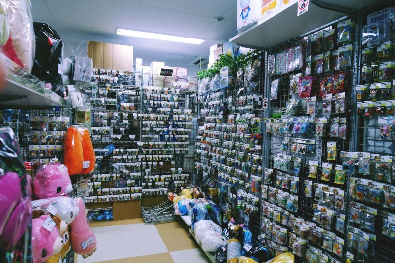 Animate in Akihabara, showing anime merchandise inside the store.