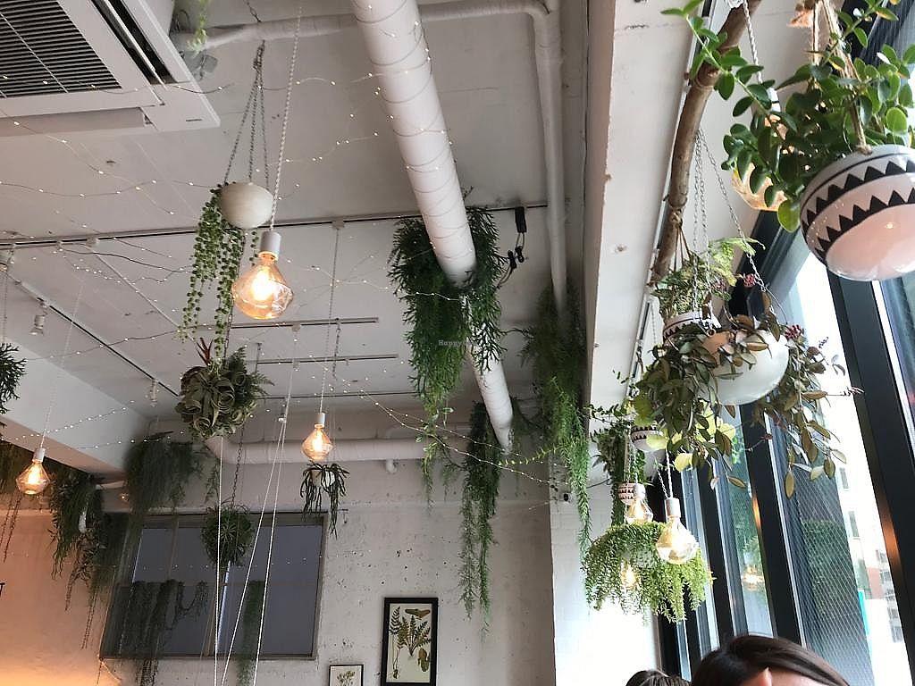 Tokyo's Top 5 Instagrammable Restaurants